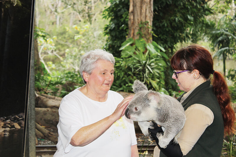 disabled holiday - gold coast animal lovers queensland