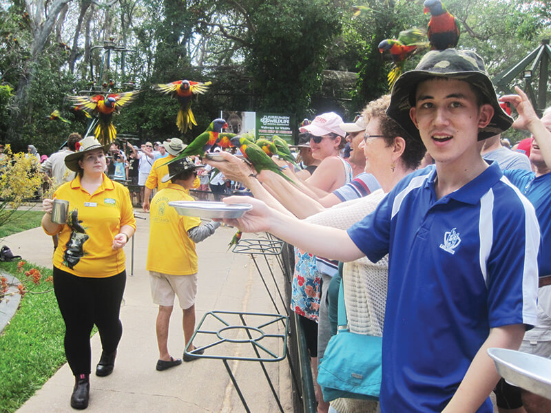 disability travel -gold coast animal lovers queensland