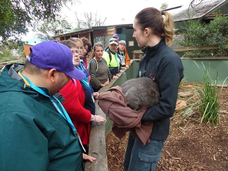 disability travel - tasmania animal lovers australia