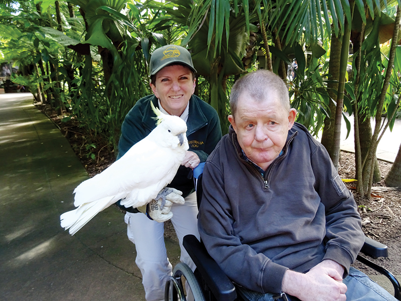 disabled holiday - sunshine coast getaway queensland