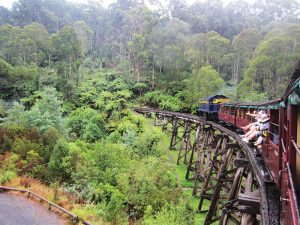 holiday for people with disabilities - yarra ranges nature lovers victoria